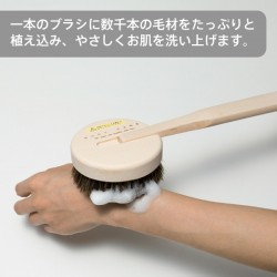 MARNA 檜木 馬毛 body brush